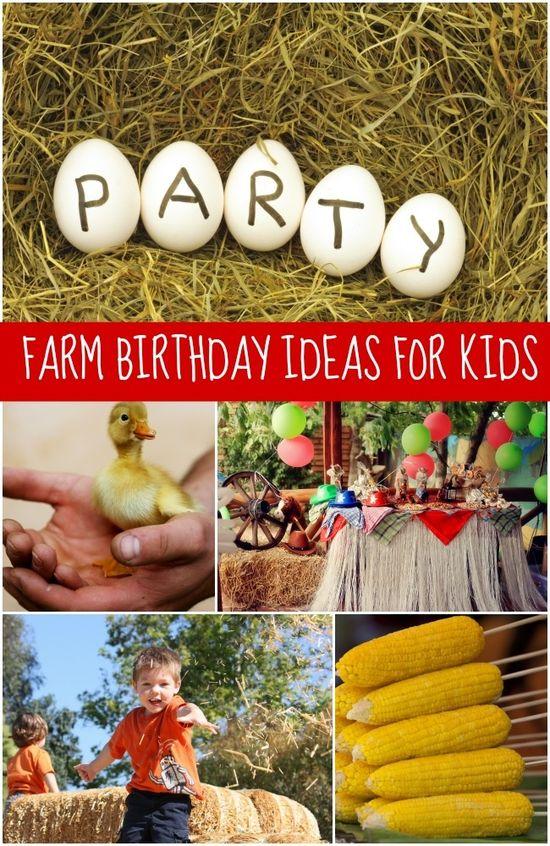 Boy's Farm Birthday Party Ideas