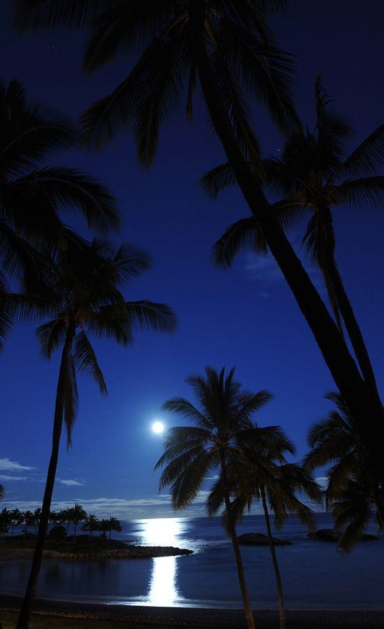 Aulani Hawaii Disney resort @T_Mizzel