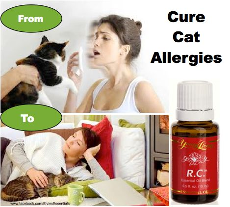 Young Living R.C. Essential Oil Allergies
