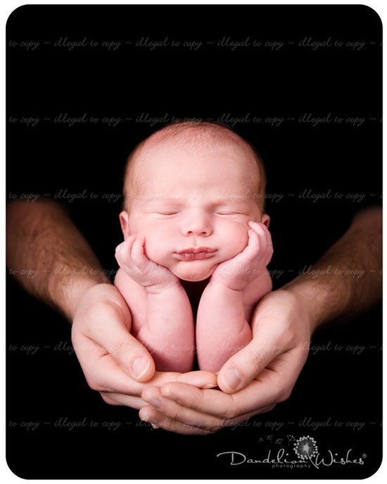 newborn newborn newborn newborn