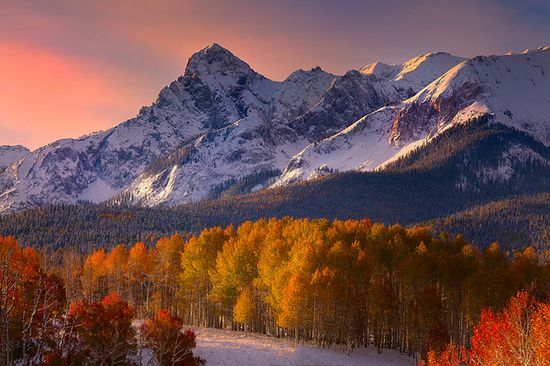 Colorado Fall Colors Mixed With Snow by Kevin Mcneal