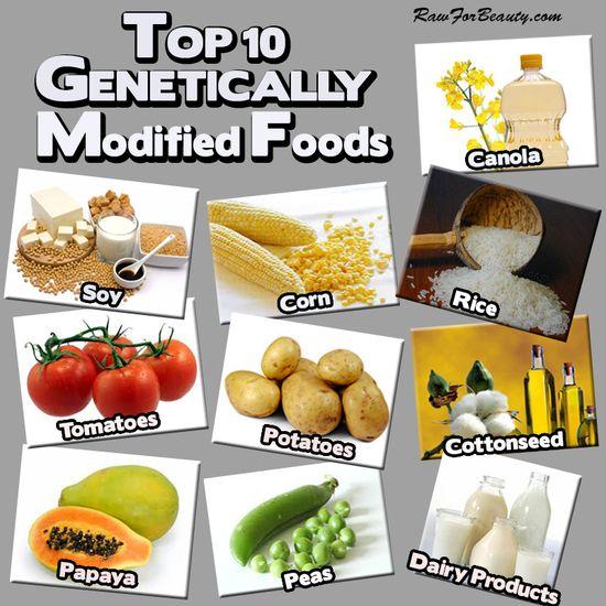 Top 10 GMO foods!