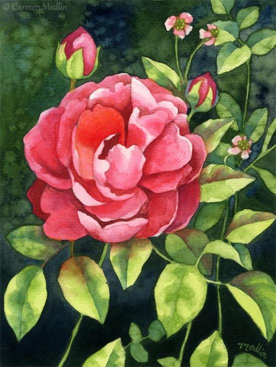 Garden Beauty - Original Watercolor Rose Painting