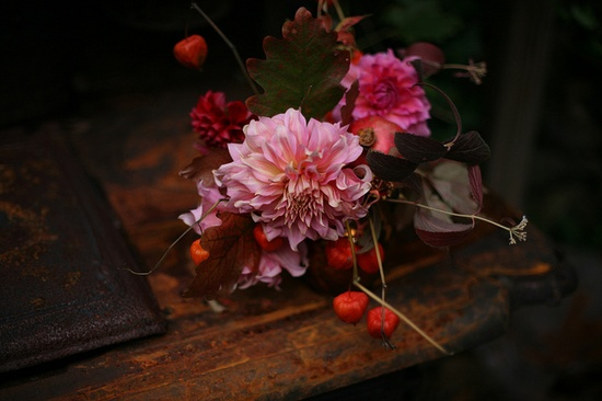 amy merrick's beautiful flowers
