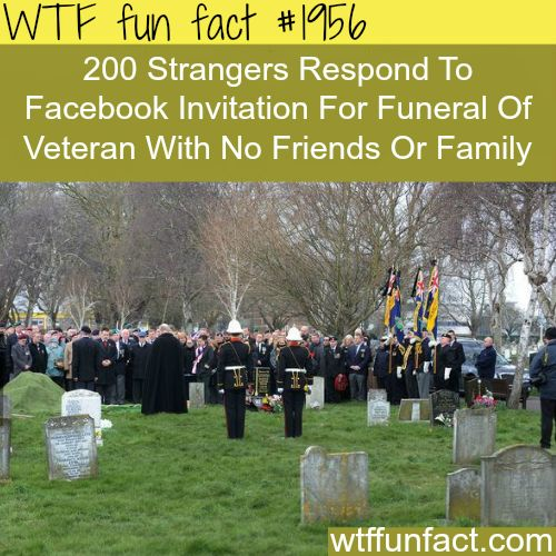 Faith in humanity RESTORED -WTF fun facts