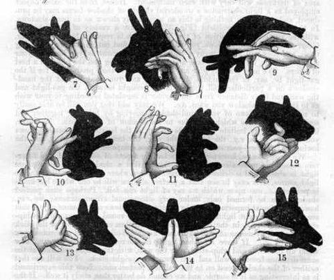 Make shadow puppets....