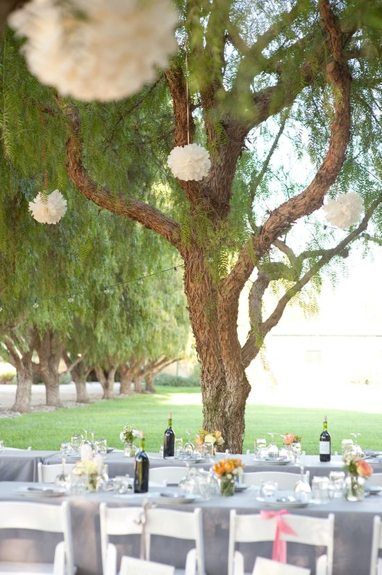 Outdoor Wedding Reception Under the Trees
