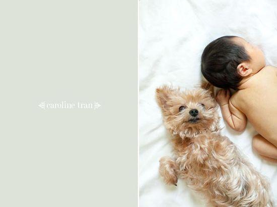 baby ashlynn / Caroline Tran