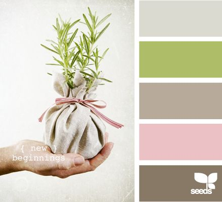 Love this color combo--taupe, grass green, petal pink