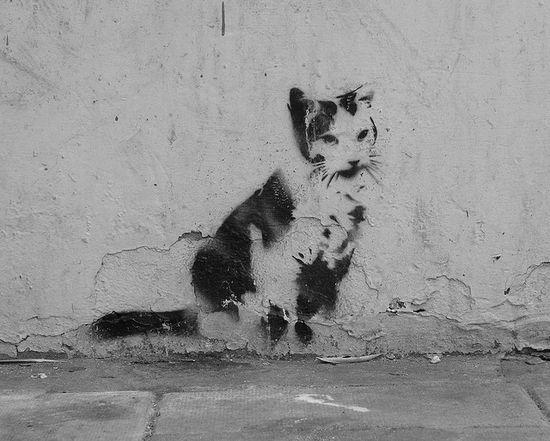 Graffiti Cat in Brighton