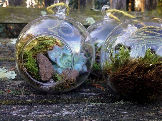 Do It Yourself Gift Idea: Ornament Terrariums