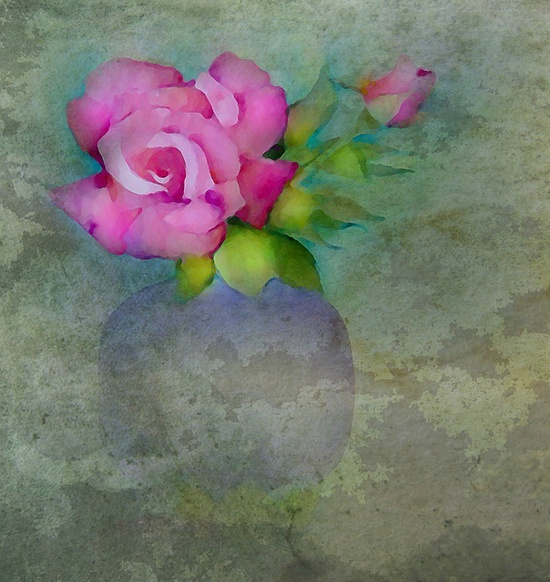 Dreamy rose  Texture by Kerstin Frank