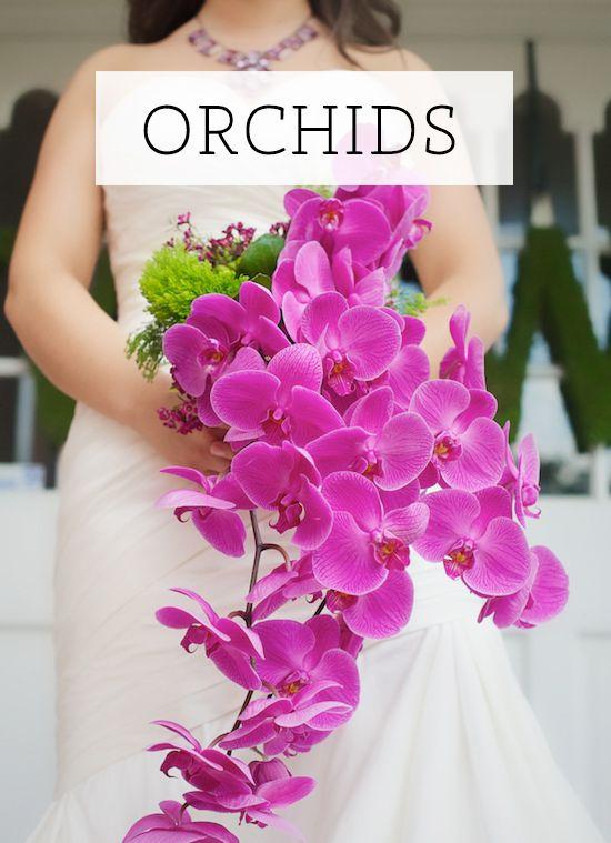 60+ Orchid Flower Arrangement Ideas!