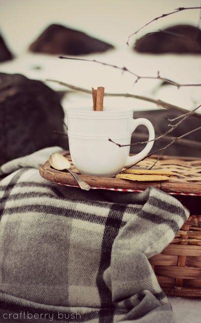 Winter Picnic, great idea! love this #summer picnic #prepare for picnic #picnic #company picnic