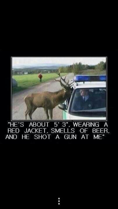 Funny photo of a deer and a police officer...