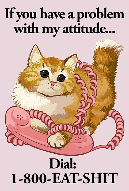 #lol #cat