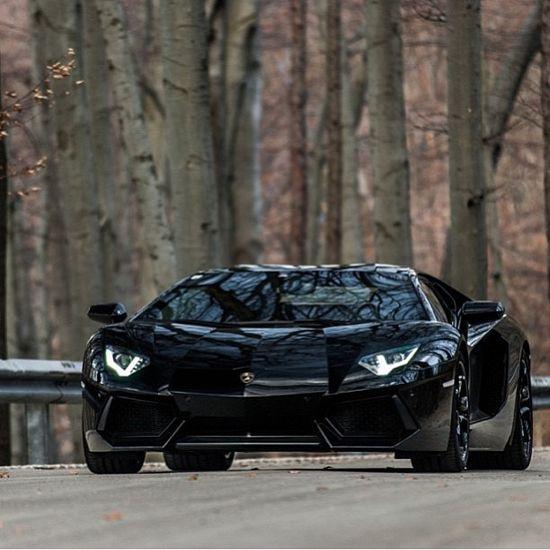 Lamborghini Aventador Woodland Ride