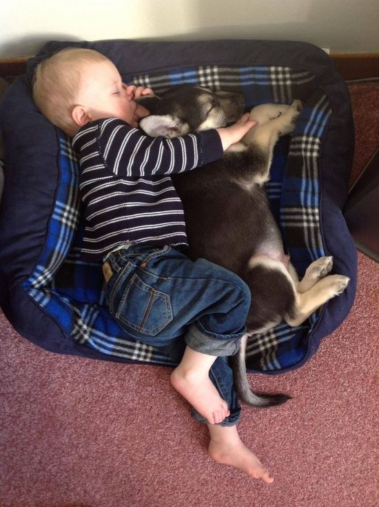 Babies and Puppies are Best Friends