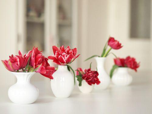 brilliant red flowers in white vases.