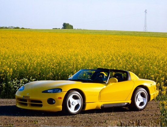 awesome dodge viper sports car - yellow in field of flowers