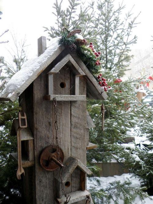 Bird Condo.../