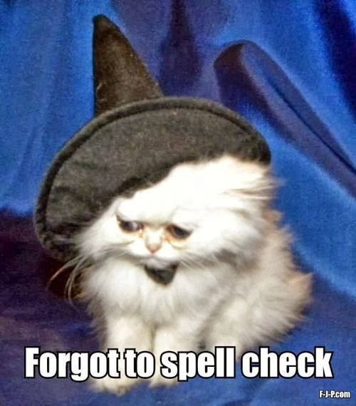 Funny cat witch fail