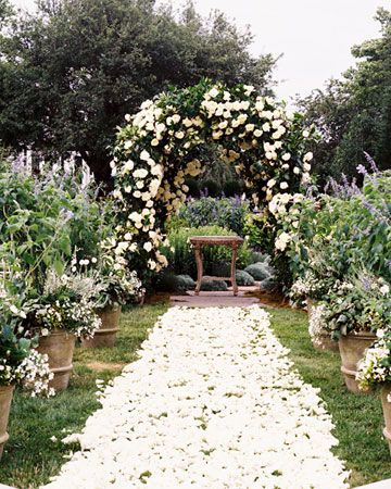 Gorgeous roses down the aisle.