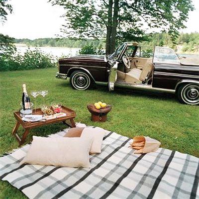 Romantic picnic ?