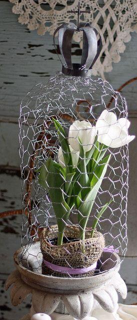 Chicken wire design for the garden