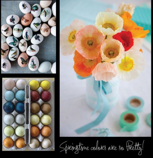Easter eggs and Spring flowers arranged in a beautiful way.