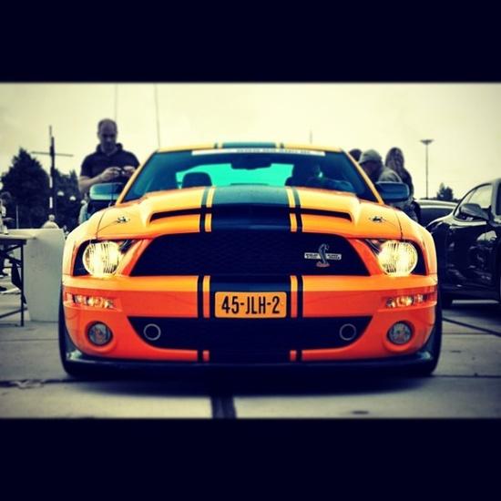 Orange Beast
