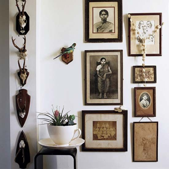 Animal skulls and old time photos.