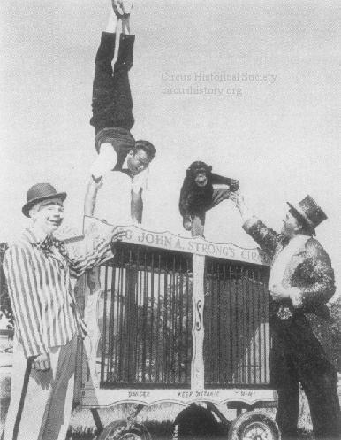 Strong's Wild Animal Circus