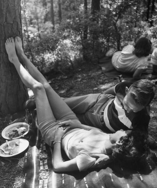 1950 #1950s #50s #vintage #picnic #couple