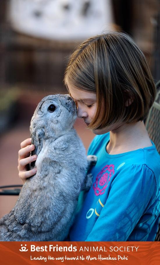 Bunny love. #rabbit #rescue #bunny