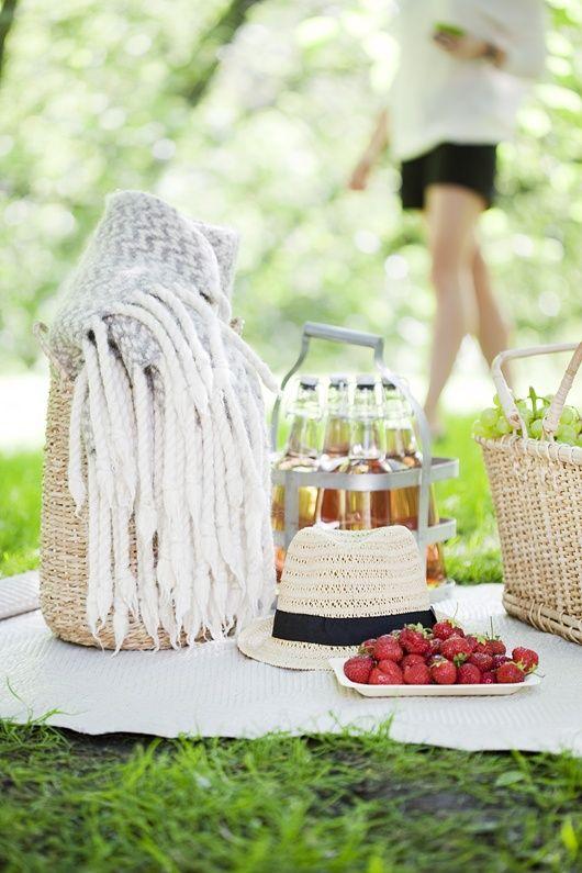 picnic#summer picnic #company picnic #prepare for picnic