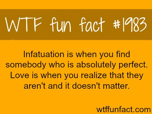 Infatuation vs Love -WTF fun facts