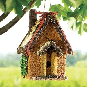 Edible bird house. The birds can eat and sleep.