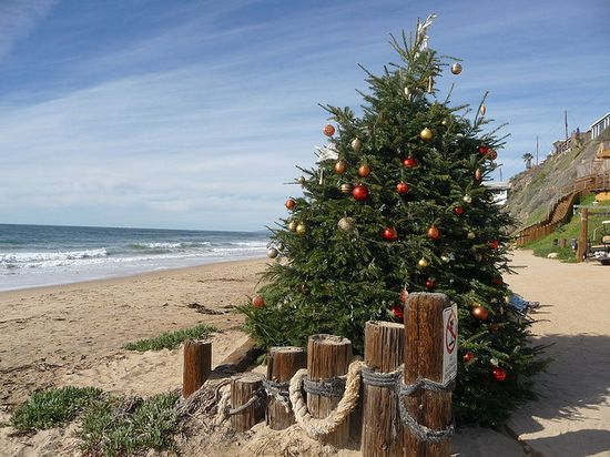 Christmas tree at the beach.