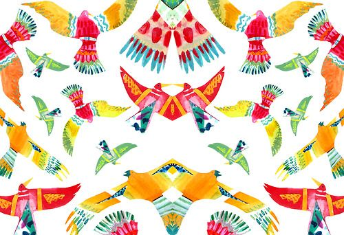 miadunton:  Imagined birds of paradise