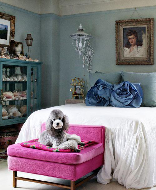 romantic bedroom. adorable poodle.