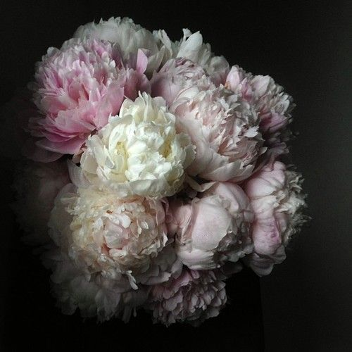 Spring Peony hand-tied flower arrangement by ABCDDesigns