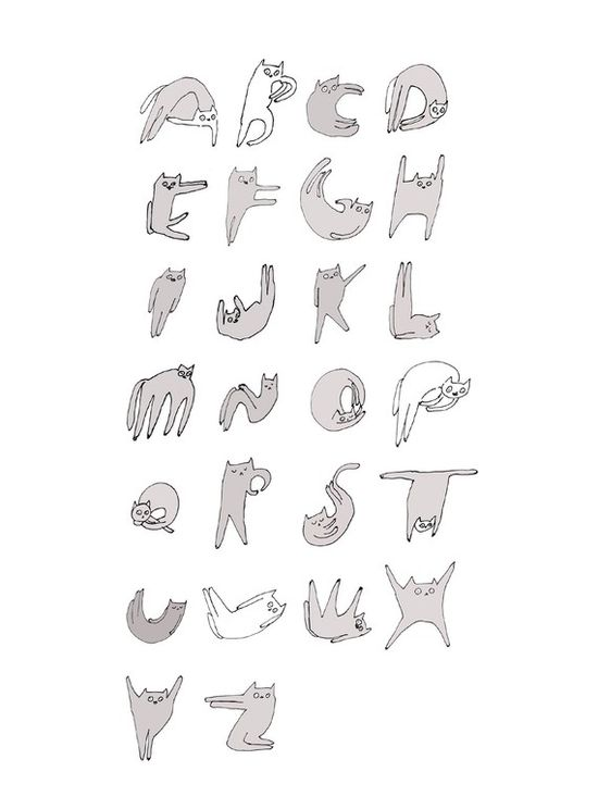 Cat: Alphabet :)