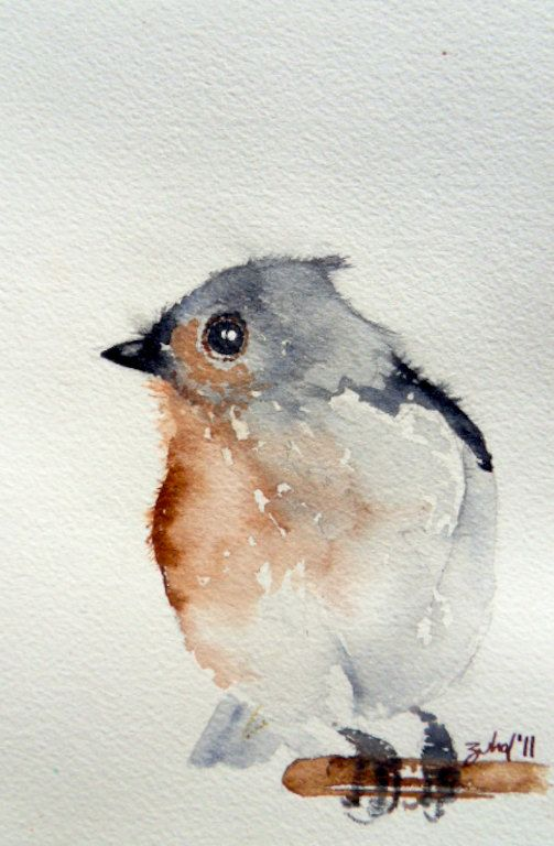 Tufted Titmouse / Original watercolor art 2011 / 5''x7'' inch original on Fabriano watercolor paper. {etsy, zuhalkanar} 30.00 USD