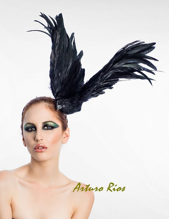 Black Raven, by Arturo Rios