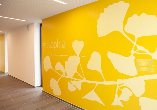 yellow environnemental design office