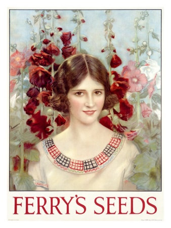 Seed packet w/lady and hollyhocks