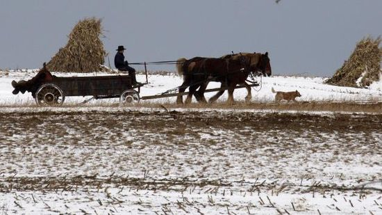 Amish health care: The Amish have it made, they are exempt to Obamacare and paying taxes.