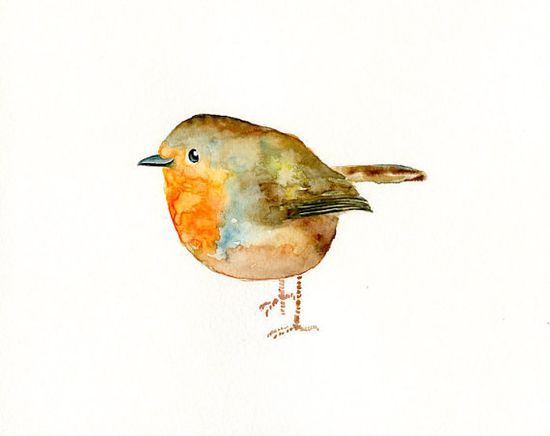 cutest watercolor bird - dimdi ???GORGEOUS LITTLE CUTIE??? @
