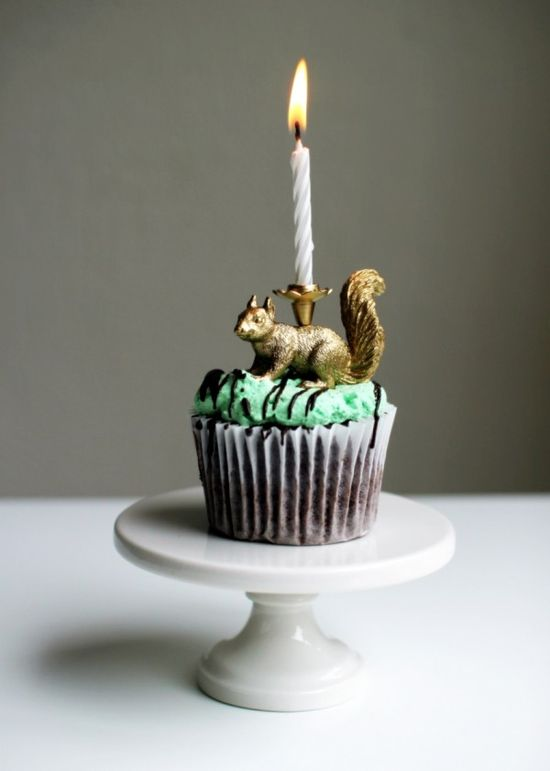 Squirrel birthday!